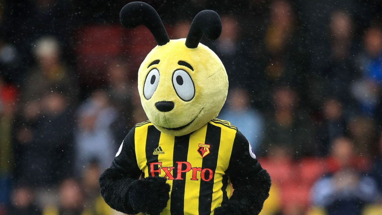 When mascots go bad: Rogues' gallery of furry suits