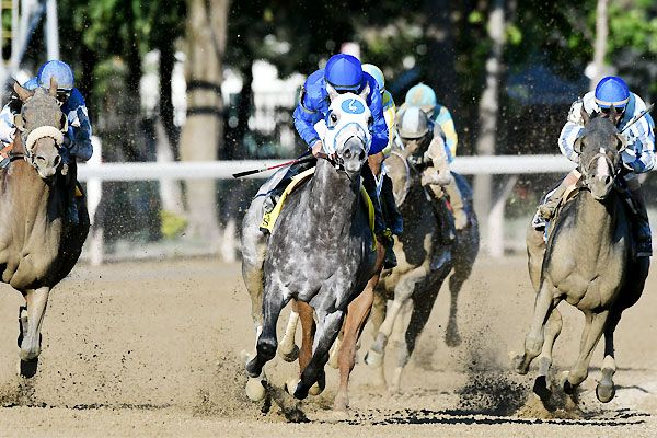 Frosted Rides Whitney To Spot In Breeders Cup Classic