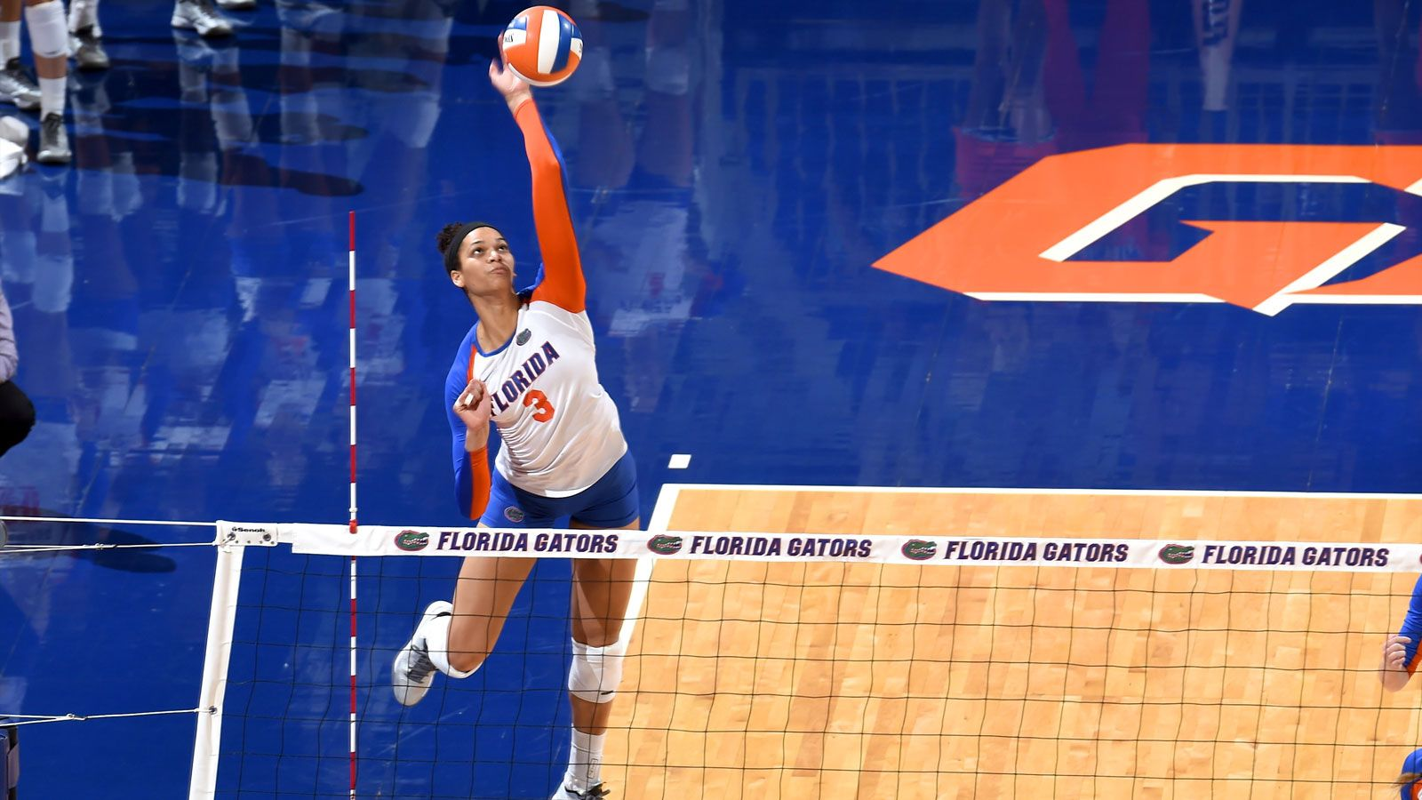 2014 SEC Volleyball Awards announced