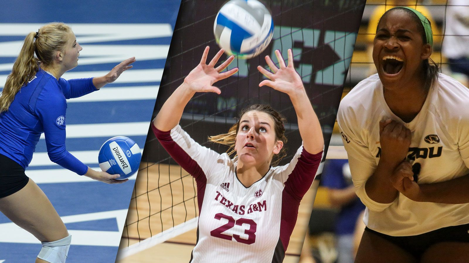 2015 Sec Volleyball Awards Announced