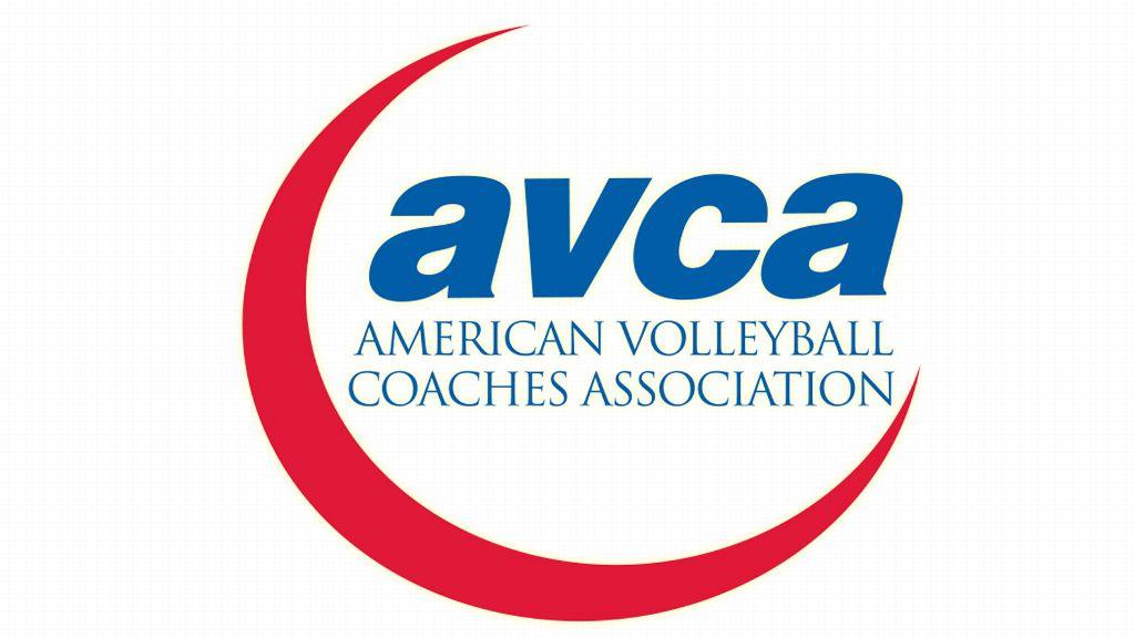 SEC teams earn AVCA Team Academic Award