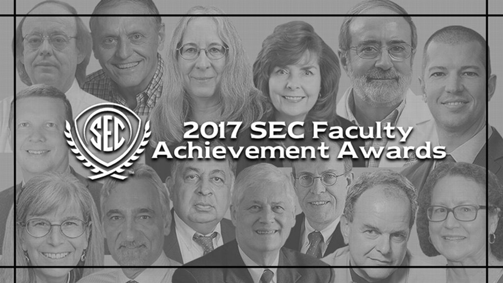 2017 SEC Faculty Achievement Awards announced