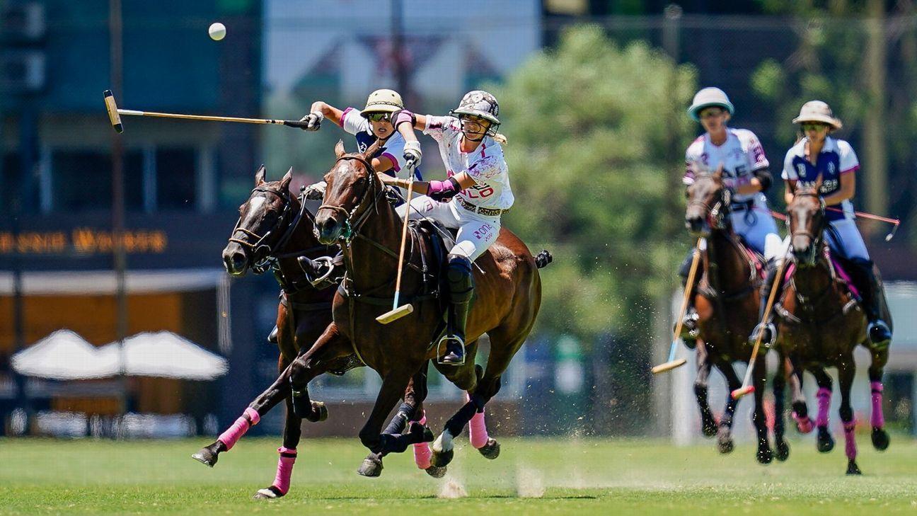 El Overo Z7 UAE  11 - 4 La Dolfina Brava