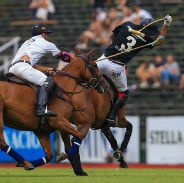 Ellerstina 12 - La Dolfina Polo Ranch 11