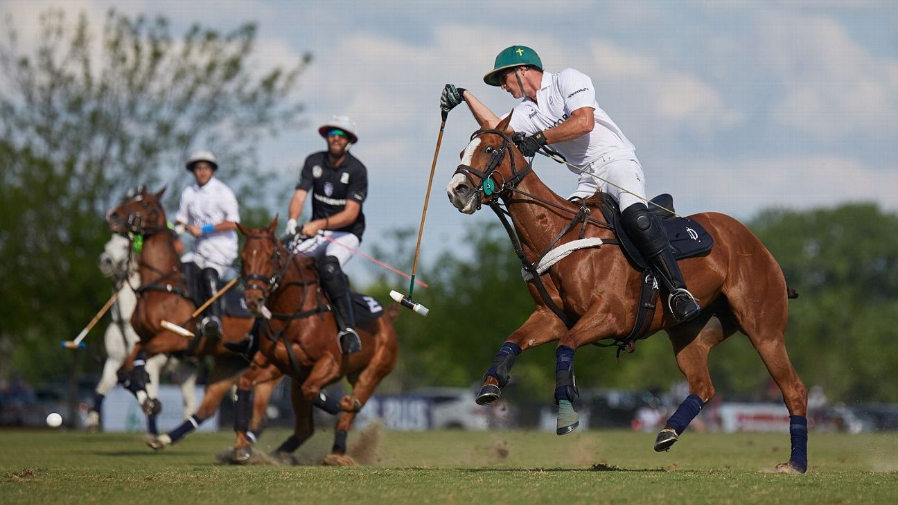 ELLERSTINA JOHOR 20 vs. LA DOLFINA POLO RANCH 4