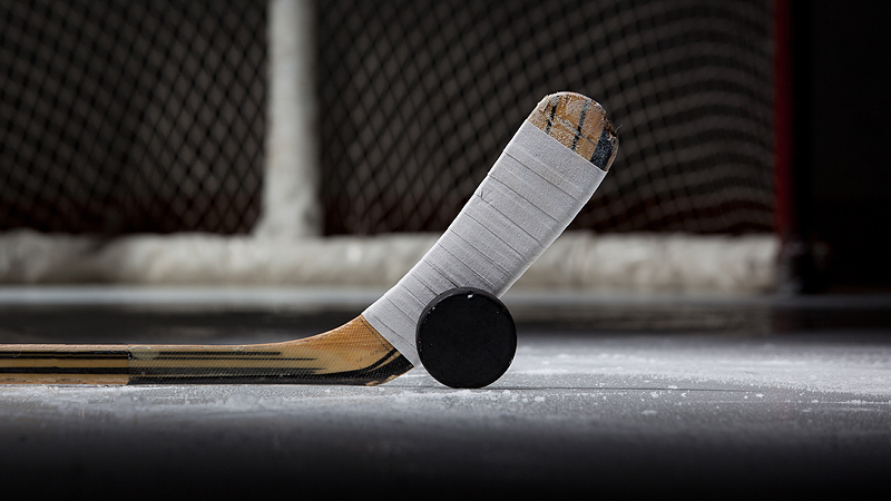Hockey Puck, Stick, and Net