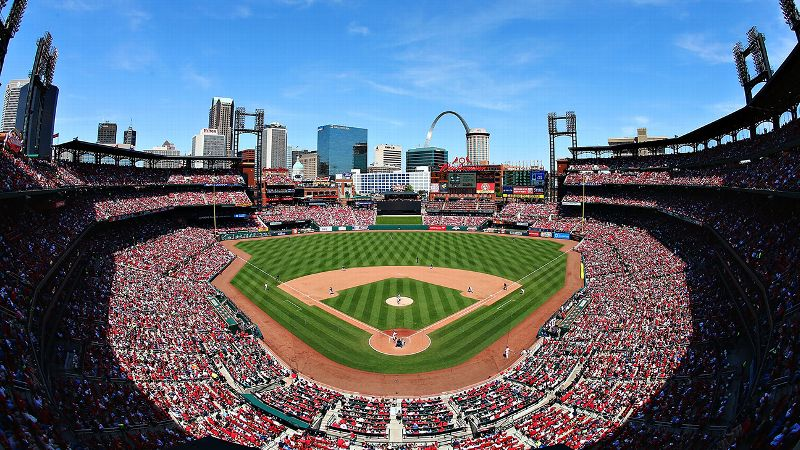 A Cardinals fanatic finally found her match on MLB Singles, one of many dating sites that are helping pair up sports fans.