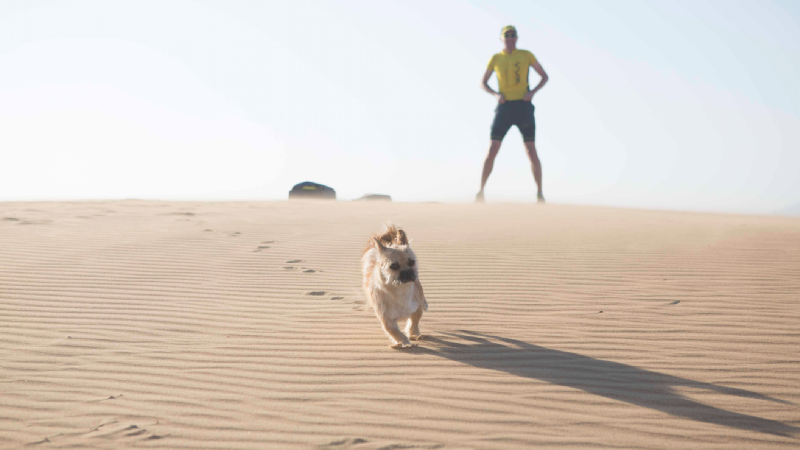 Gobi the dog and elite marathoner Dion Leonard ran the Gobi Desert in China together.