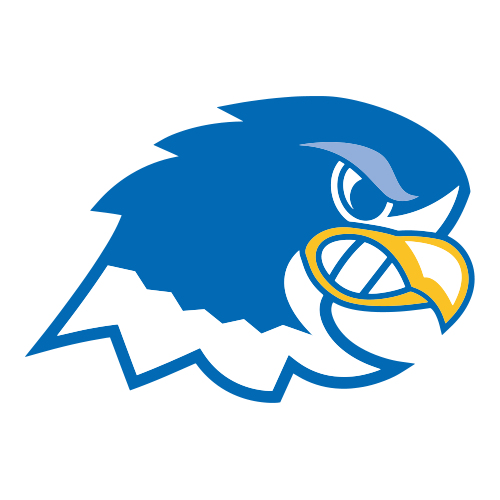Notre Dame College Falcons College Football Notre Dame