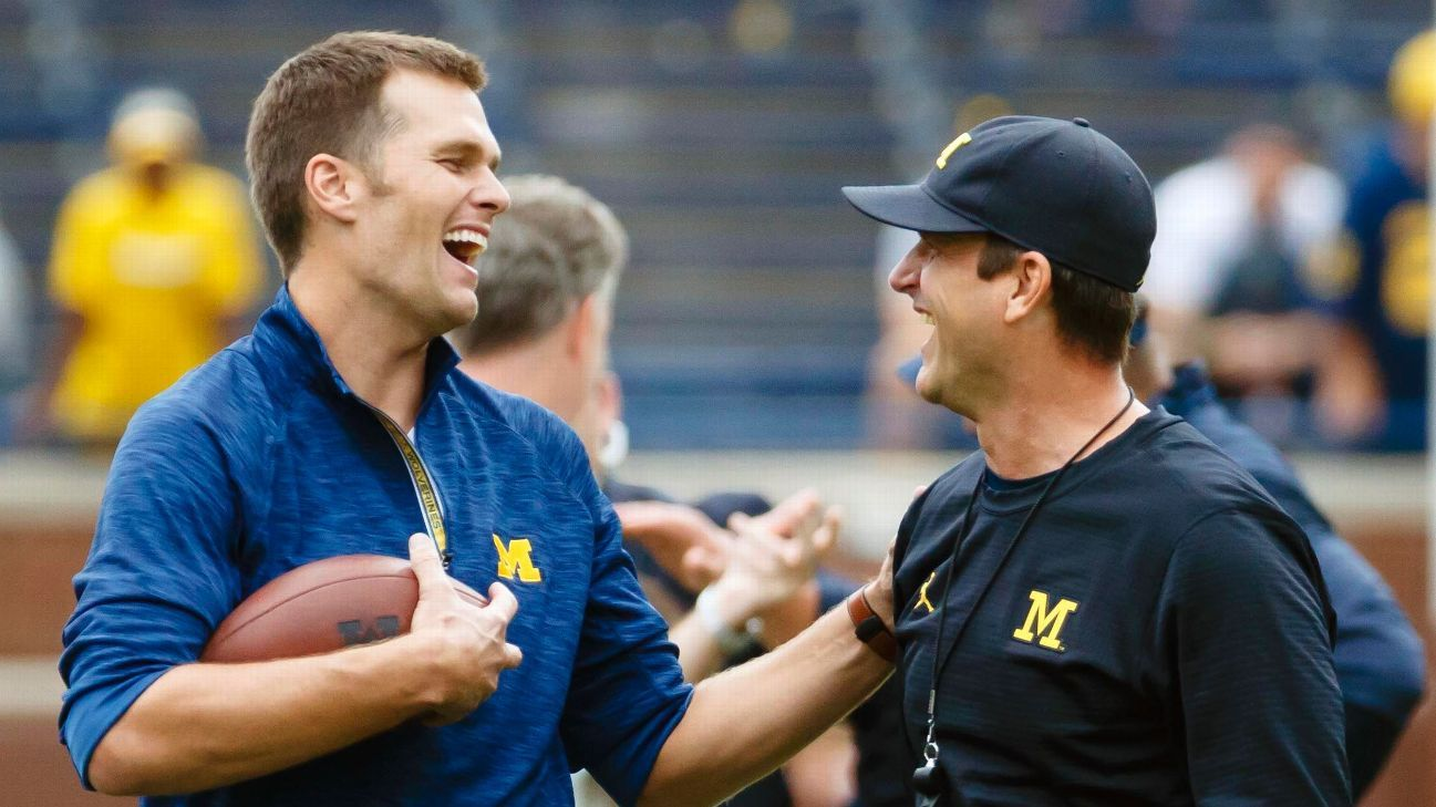 Image result for harbaugh brady