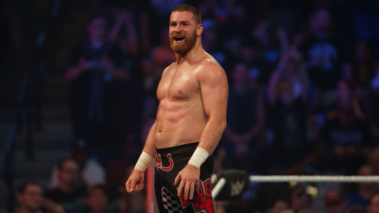 Image result for sami zayn