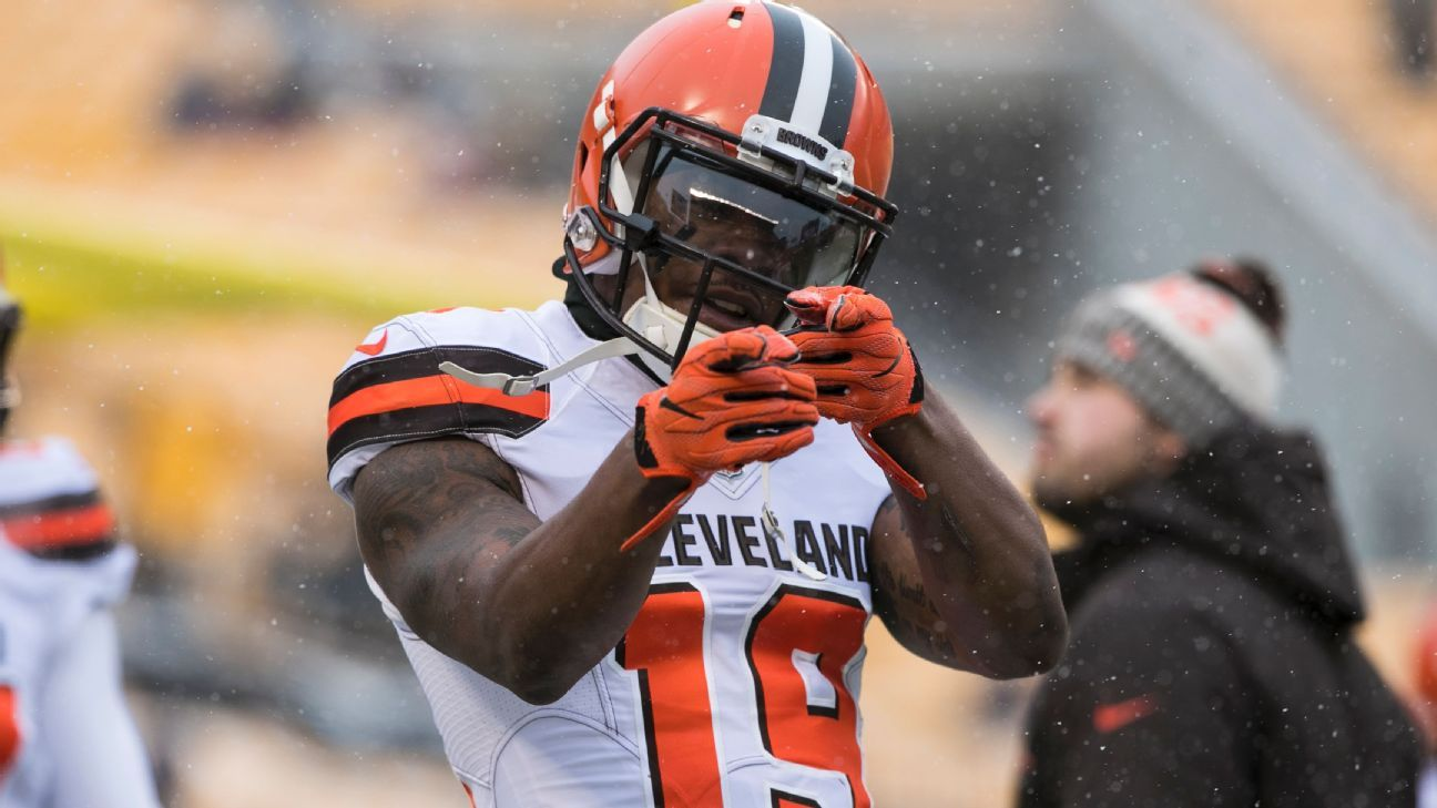 378e163f1 Corey Coleman the latest first-rounder to try to revive career in NE - New  England Patriots Blog- ESPN