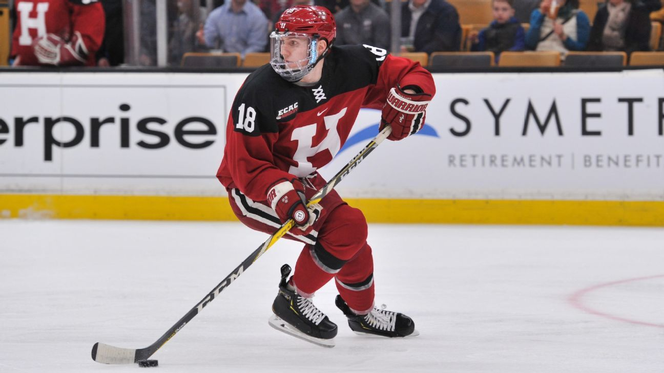 buy popular 7208b e4040 Top 25 NHL prospects to watch in the 2019 NCAA hockey tournament