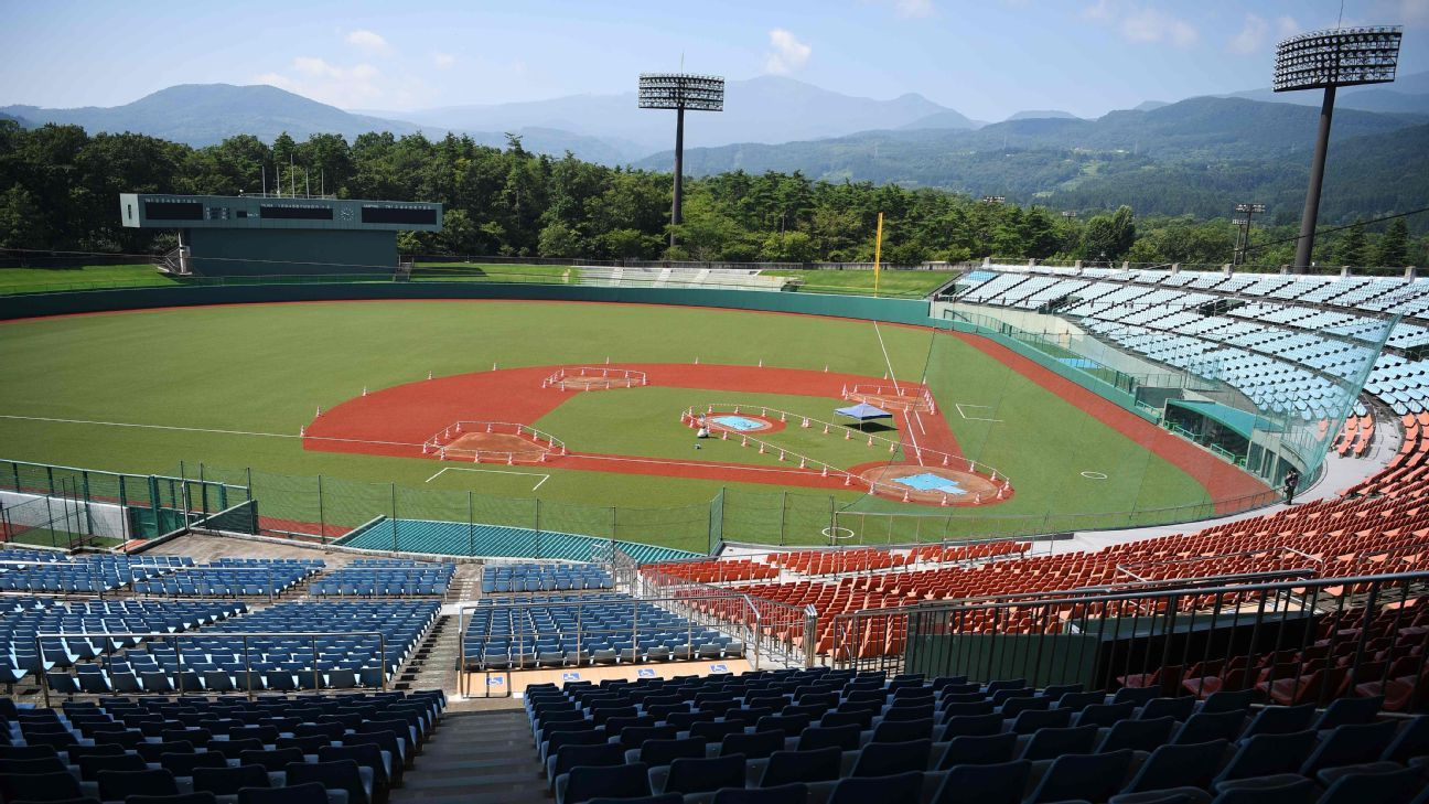 Olympic baseball qualifier postponed indefinitely