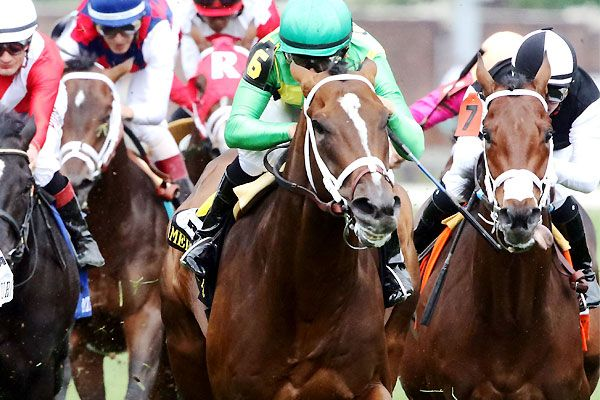 Grass Proves Greener For Arklow In American Turf
